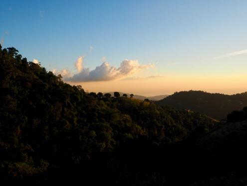 Mount Edge, Blue Mountains